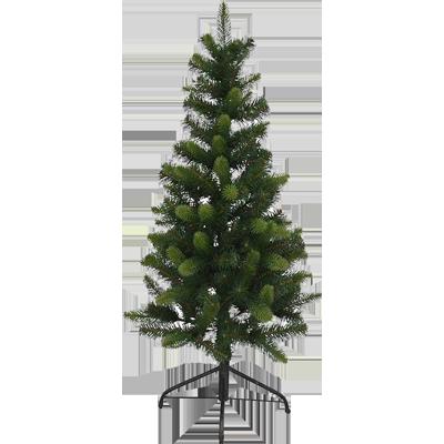 Tree 1800